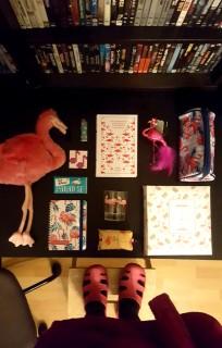flamingok.x