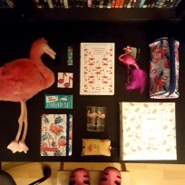 flamingok.x
